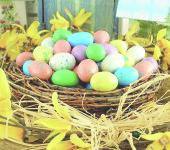 яйца3