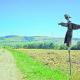 Scarecrow_in_Wola_Sękowa_at_cart_track