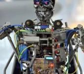 робот Скелли Даниловский рынок