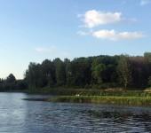 Сестрорецкий парк