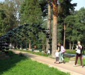 Красногорск парк 03