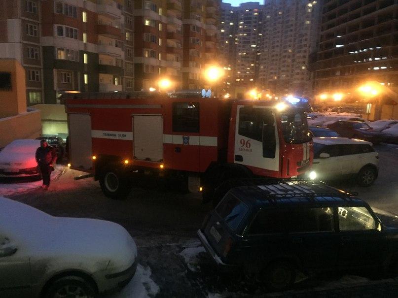 пожарная Химки Горшина