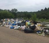Руза Горбово борщевик мусор