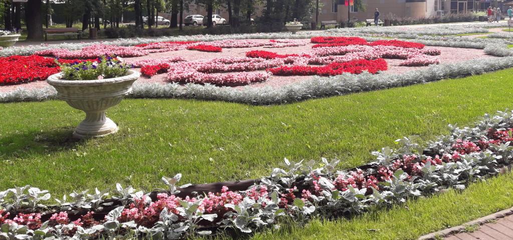 Химки цветы