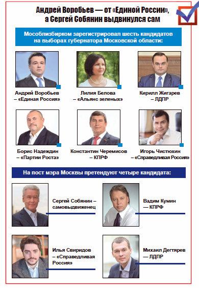 выборы МО и Москва картинка