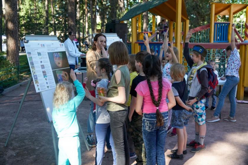 детские площадки Красногорск