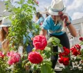конкурс цветники Москва