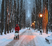 парк зима