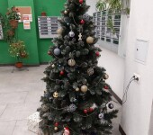 novoetushino_up_kvartal_131402324_227686435598268_5014380344763675296_n